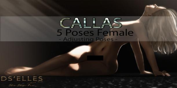 Affiche Callas poses DS'ELLES